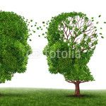 Maladie d'Alzheimer et maladies apparentées